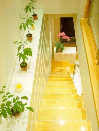Làm đẹp cho cầu thang